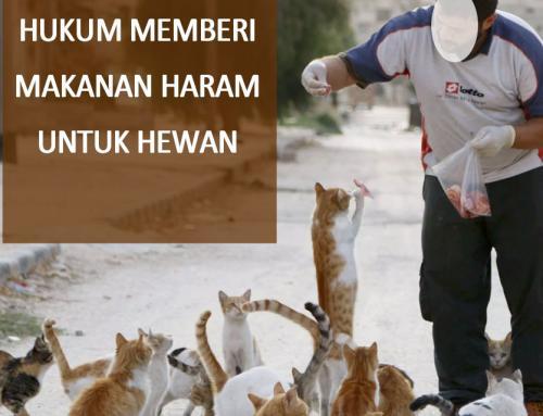 HUKUM MEMBERI MAKANAN HARAM UNTUK HEWAN